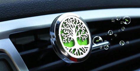Aromaterapia v aute – ako na to?